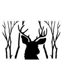 Deer Head in Forest