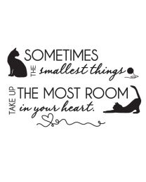 The Smallest Things - Cats